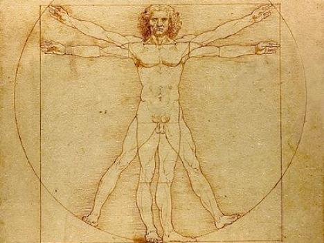 תרשים של אשליה- האדם הוויטרובי של דה וינצ'י