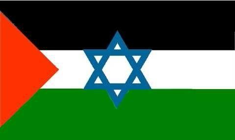 דגל אפשרי של הפתרון הניאו-בייליניסטי